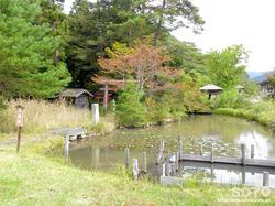 阿久津八幡神社(05)