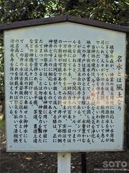 若狭姫神社(11)