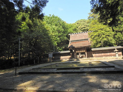 若狭彦神社(8)