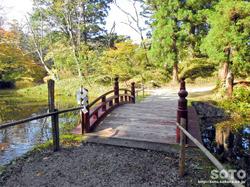 大沼の浮島(かささぎ橋)