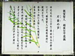 居多神社(3)