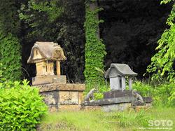 居多神社(7)