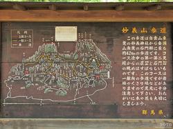 妙義神社(09)
