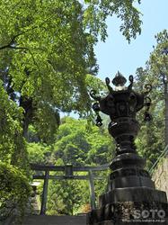 妙義神社(10)
