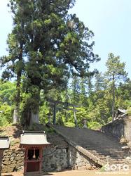 妙義神社(11)