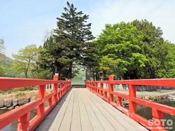 赤城神社(03)