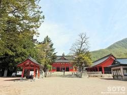 赤城神社(12)