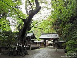 駒形神社(05)