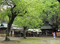 駒形神社(07)