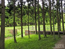 岩手山神社(09)