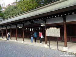 秩父神社(11)
