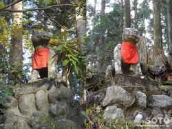 三峯神社(遥拝殿の狛狼)