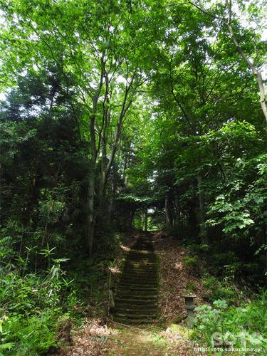 剣龍神社(1)