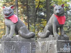 三峯神社(随身門の狛狼)