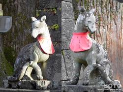 三峯神社(拝殿前の狛狼)