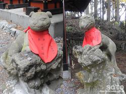 三峯神社(大山祇神社の狛狼)