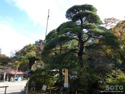 宝登山神社(03)