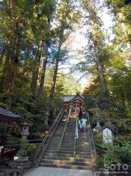 宝登山神社(05)