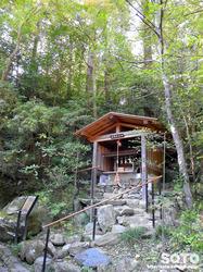 宝登山神社(15)