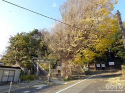 出雲大社(奉納山)