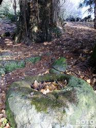 石神社(4)