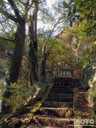 三閑稲荷神社(10)