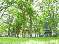 羽幌神社(6)
