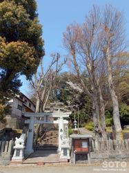 宇土 住吉神社(04)