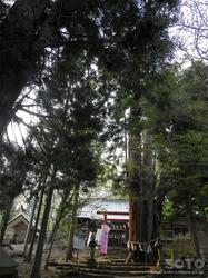 磐椅神社(5)