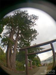 福島大神宮(05)