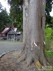 福島大神宮(06)