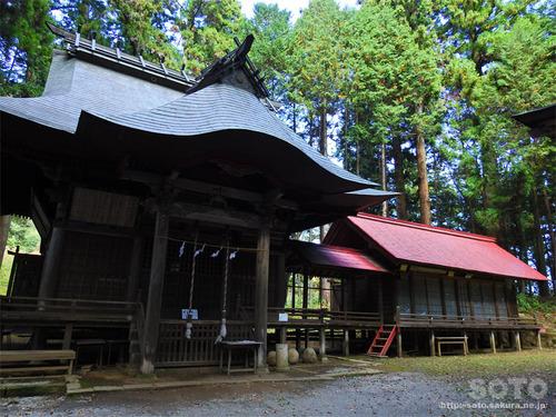 親都神社(拝殿)