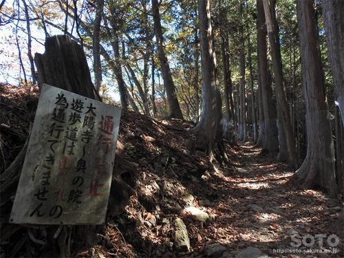 三峯神社(11)