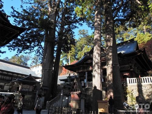 三峯神社(38)