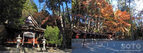三峯神社(39)