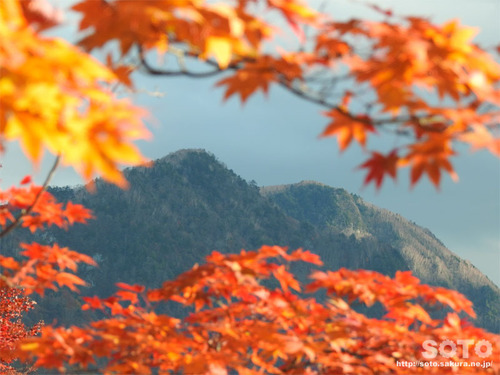 三峯神社(43)