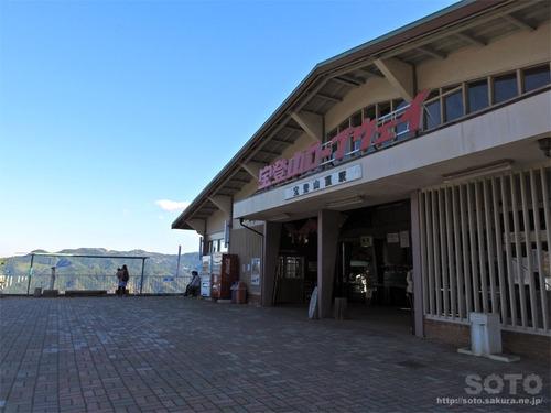 宝登山(09)