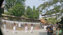 阿蘇神社おんだ祭(6)