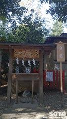 田無神社(白龍)