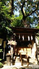 田無神社(恵比寿様)