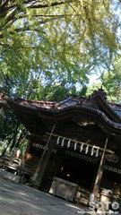 田無神社(拝殿)