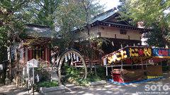 田無神社(茅の輪)