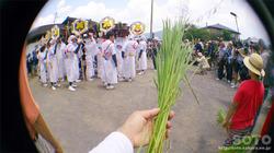 阿蘇神社おんだ祭(21)