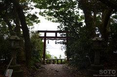 雄島・大湊神社から見た東尋坊