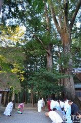 水屋神社(9)