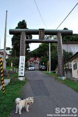 函館観光(船魂神社/1)