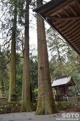 鉾納社(多賀神社)