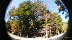 水屋神社2015(1)