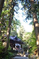 十和田神社(境内)