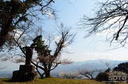宮地嶽神社(本殿背後の眺め)
